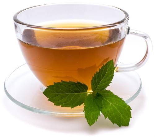 Tee Wasserkocher Test